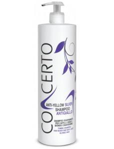 Punti di Vista Concerto Anti-Yellow SILVER Shampoo - Тонирующий шампунь от желтизны для обесцвеченных и седых волос, 1000 мл