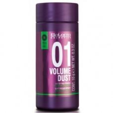 Salerm Pro Line Volume Dust 01 Mattifying Powder - Пудра для придания волосам объема и плотности, 10 г