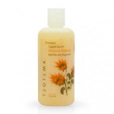 Teotema Care Moisture Balance Shampoo - Шампунь увлажняющий, 1000 мл.