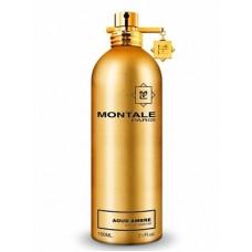 Montale Aoud Ambre 100 мл.